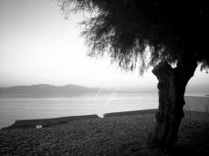 Golf of Corinth